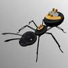 Principles of Ant Locomotion Could Help Future Robot Teams Work Underground