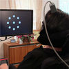 Neural Implant Enables Paralyzed ALS Patient to Type Six Words Per Minute