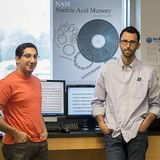 Boise State researchers Reza Zadegan and Will Hughes