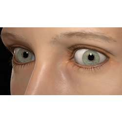 Computer-animated eyes, reconstructed from a single facial scan.
