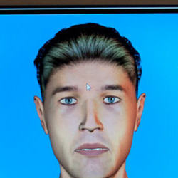 The kiosk-based screening system uses an avatar to interview travelers and identify those who might be suspicious.