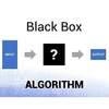 In Black Box Algorithms We Trust (or Do We?)