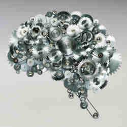 A representation of the human brain.