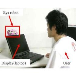 Eye Robot with laptop and user