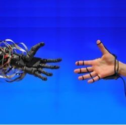 robotic and human hands