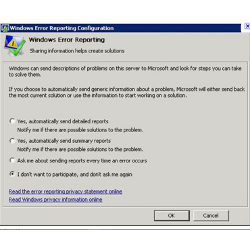 Windows Error Reporting window