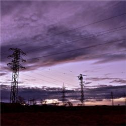 Electric grid