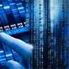 Big Data and Dna: What Business Can Learn from Junk Genes