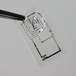 Biodegradable integrated circuit