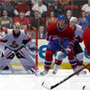 Desperate, Hockey Fans Root For Virtual Team