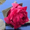 Better Origami ­sing Nature and Maths