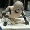 To Create a Robot With Common Sense, Mimic a Toddler
