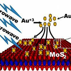 A representation of how gold nanoparticles improve the electrical characteristics of molybdenum disulfide.