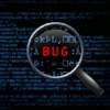 Newest Bug Bounty Touts $10K Rewards, Appeals for Help in Finding Flash Flaws