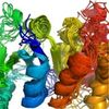 Map of Body's Protein-Folding Machinery Wins a Major Medical Prize
