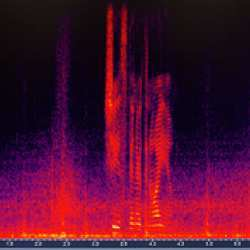 A spectrograph of the sound the car's microphone picks up when the driver is speaking.
