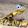 Carnegie Mellon's Snake Robots Learn to Turn By Following the Lead of Real Sidewinders