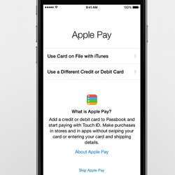 Home screen of the Apple Pay app.