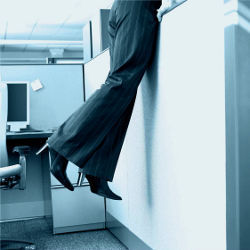 Storming the Cubicle, illustrative photo