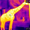 How Thermal Imaging Tech Is About to Become Hot Stuff