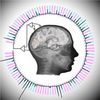 Scientists Decode Brain Signals Nearly at Speed of Perception
