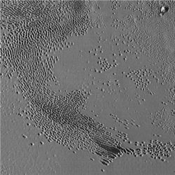 Sublimation pits on Pluto
