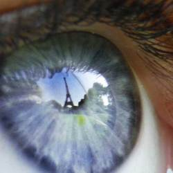 A human eye focuses on a specific aspect of an image.
