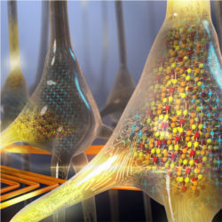 Artificial neurons