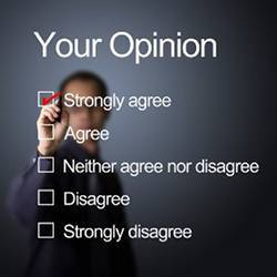 Choices frequently offered in opinion polls.