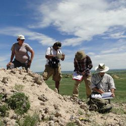 researchers doing geologic mapping