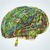 Pocket Brains: Neuromorphic Hardware Arrives For Our Brain-Inspired Algorithms