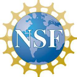 Logo of the U.S. National Science Foundation.