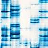 Cryptographers and Geneticists ­nite to Analyze Genomes They Can't See