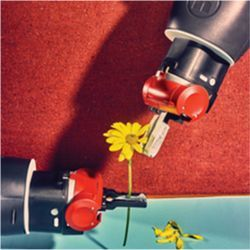 Robot manipulating flower