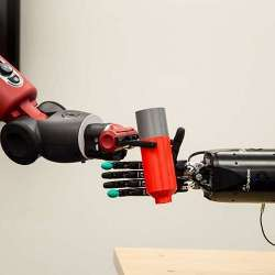 The research team is creating a living pathway from the robot's touch sensation to the user's brain to help amputees control the robotic hand.