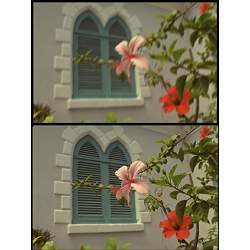 A deliberately degraded image (top) is restored by the algorithm (bottom).