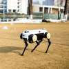 Come Meet ZJ­'s Robot Dog 'Jueying'