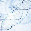 Inching Closer to a DNA-Based File System
