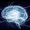 Seeing the Brain's Electrical Activity