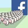 My Cow Game Extracted Your Facebook Data