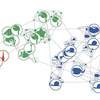 Applying Network Analysis to Natural History