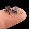 Bug-Sized Robot Competitors to Swarm DARPA's 'Robot Olympics'