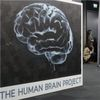 Chief of Europe's €1-Billion Brain Project Steps Down