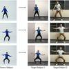 'Everybody Dance Now': UC Berkeley Researchers Develop Technology to Alter Dance Videos