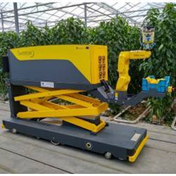 The SWEEPER robot in a greenhouse.