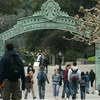 With Student Interest Soaring, UC Berkeley Creates New Data-Sciences Division
