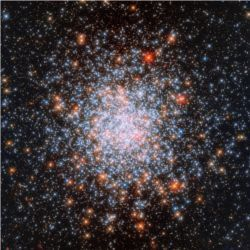 Star cluster NGC 1866