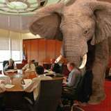 An elephant in the board room.