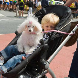child and dog in stroller