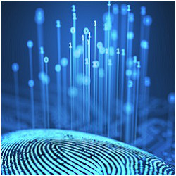 fingerprint and binary digits